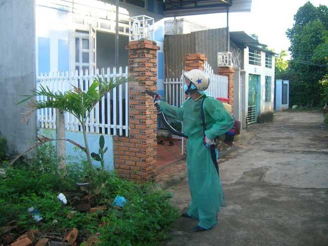Quy trình phun thuốc diệt muỗi tại công ty Bình Đan 3