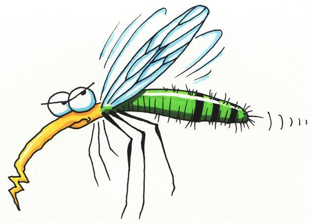 Tác dụng của phun thuốc diệt muỗi tại nhà 1