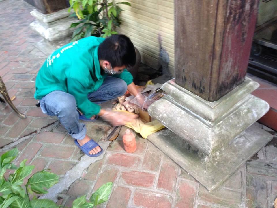 Dịch vụ diệt mối tận gốc giá rẻ tại Hà Nội