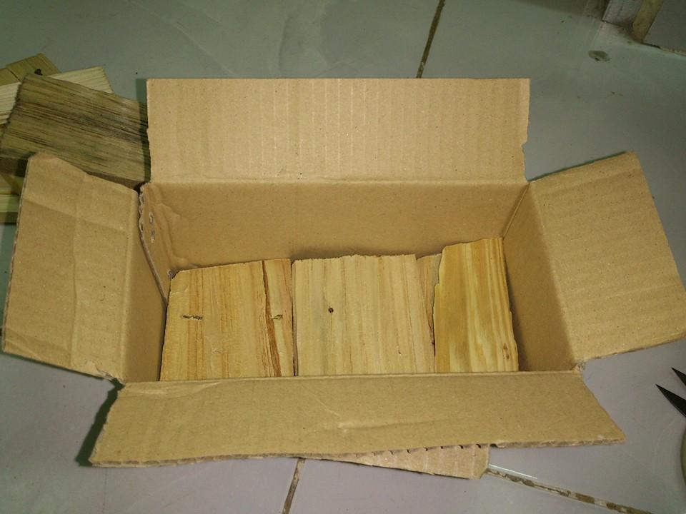 Bước 1: Đặt hộp nhử mối: 1