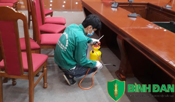 Dịch vụ diệt mối tận gốc tại quận Long Biên - Hà Nội 1