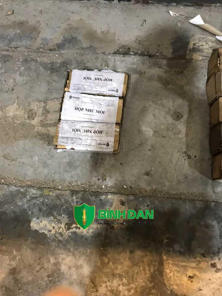 Diệt mối tận gốc kho hàng,kho giấy,nhà kho chứa nhiều ba lét gỗ thông 4